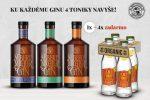AM_gin_indi_tonik